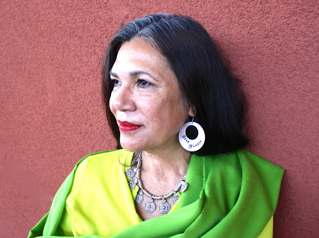 the literary contributions of ana castillo